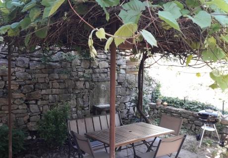terrasse végétalisée, rez de chaussée